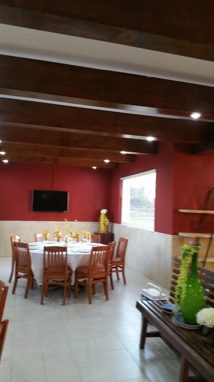 Decoración interior y techo de pladur abovedado.