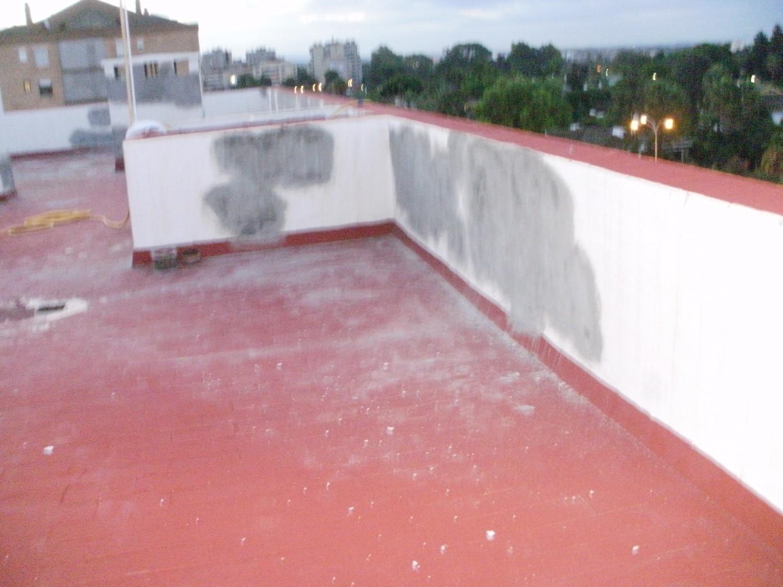 C.P. Edificio Claveles